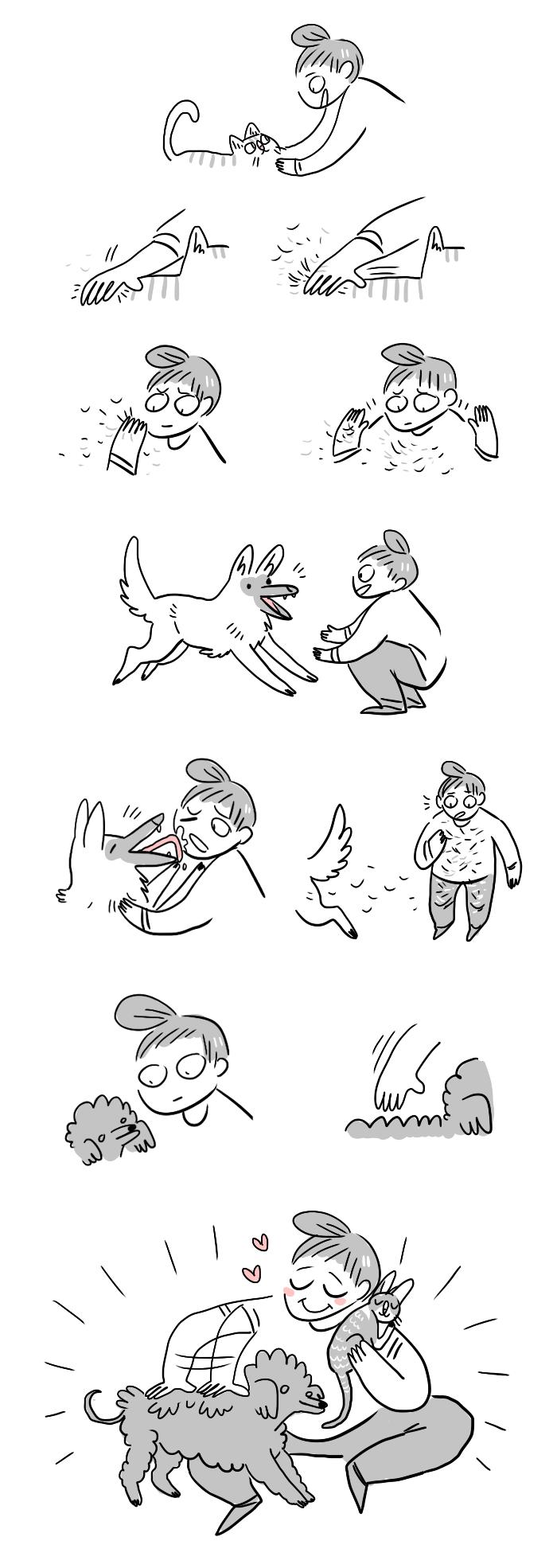 koirankarvat